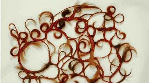 arabesques capillaires