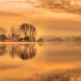 PATEIRA DE FERMENTELOS by Ed  von Ems - Landscapes Waterscapes