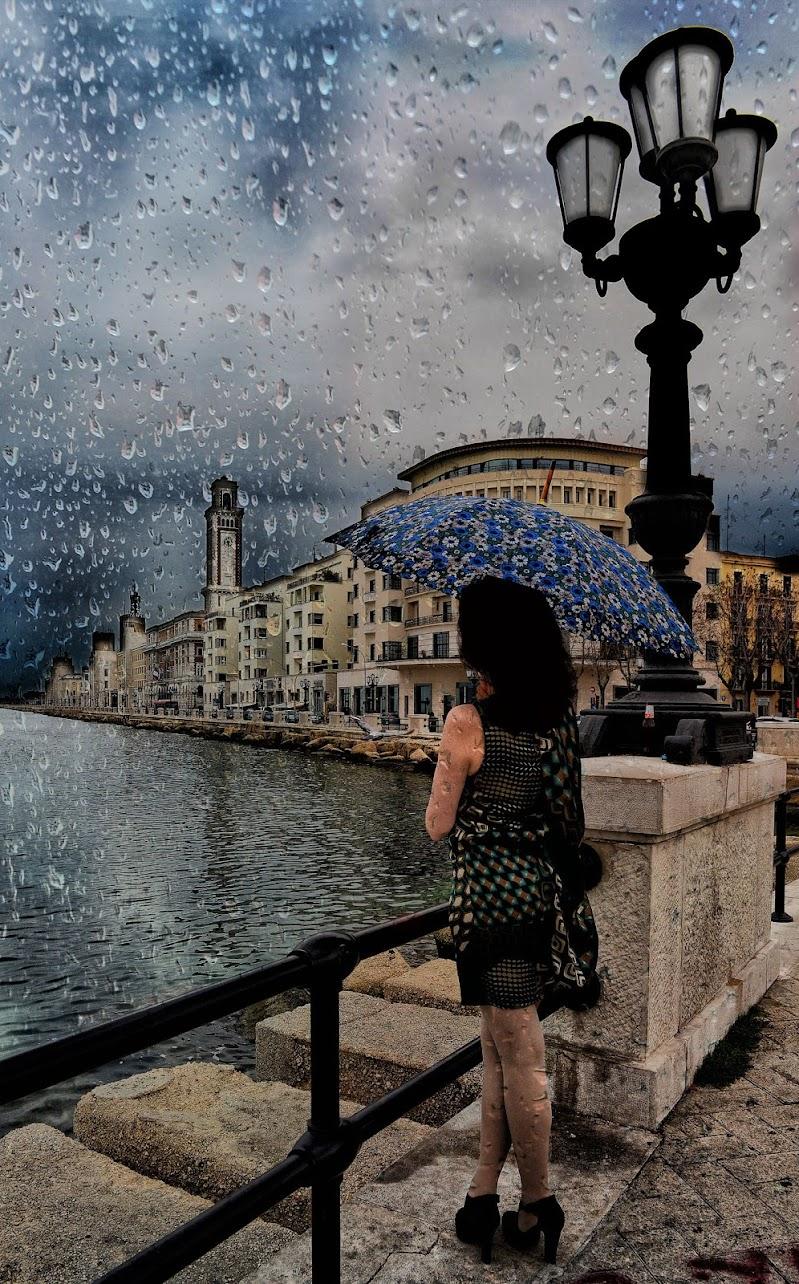 Piove a Bari di Diana Cimino Cocco