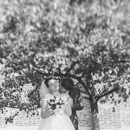 Wedding photographer Elena Sidorova (Stopkadr). Photo of 13.11.2013