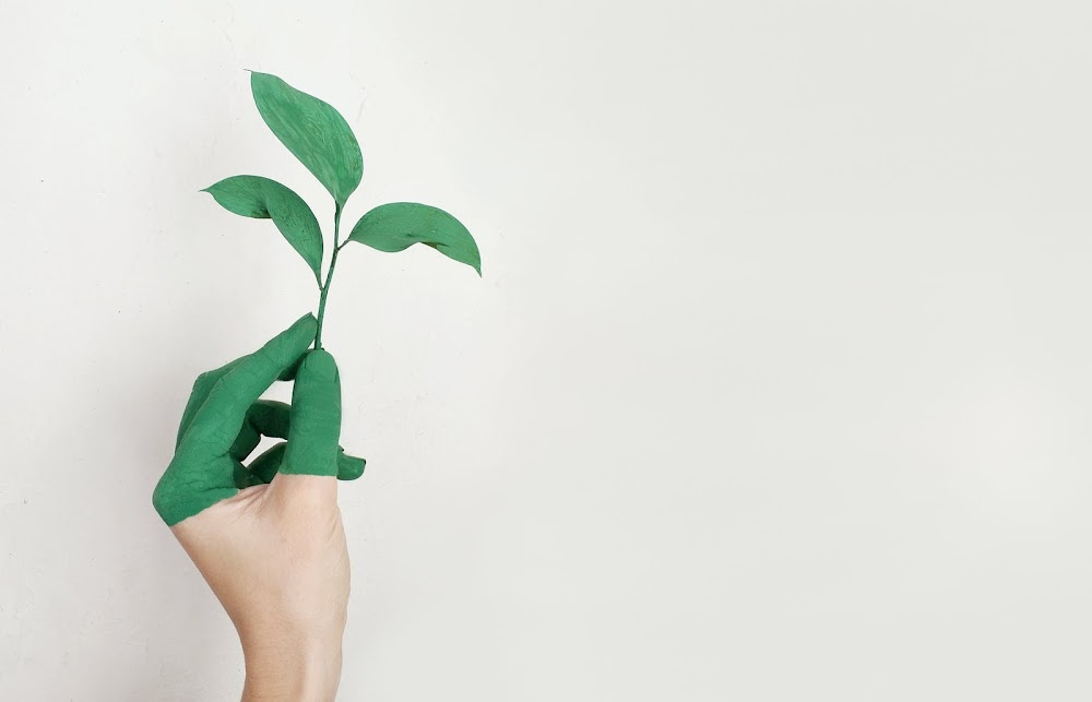 how-to-be-environmentally-friendly-at-work