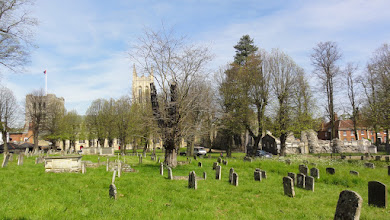 Photo: Jardins de l'Abbaye