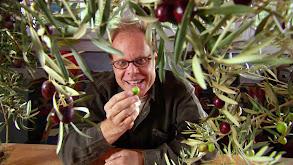 Olive Me thumbnail