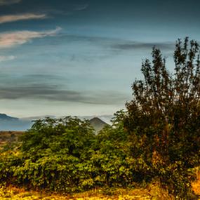 Mexican Volcanoes by Cristobal Garciaferro Rubio - Landscapes Prairies, Meadows & Fields ( volcano, popo, mexico, iztaccihuatl, popocatepetl, volcanoes )