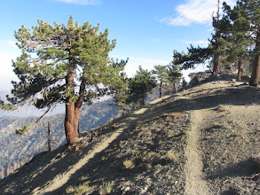 Photo: Junction with PCT 0.2 mile northeast of Mt. Hawkins