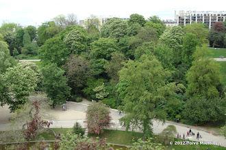 Photo: Vehreys Pariisissa on aivan uskomatonta jo toukokouun alkupäivinä!