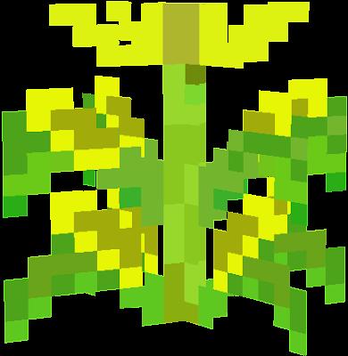 topofcorn