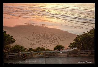 Photo: 'Lotus', Ocean Beach, SF. A freeform spiraling lotus flower design. very large!