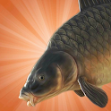 Carp Fishing Simulator icon