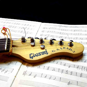 by Bhaskar Patra - Artistic Objects Musical Instruments (  )