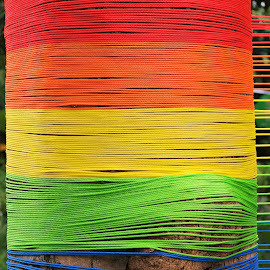 Nylon Ropes by Koh Chip Whye - Abstract Patterns (  )