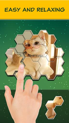 Jigsaw Hexa Block screenshot 1