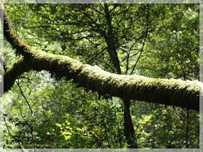 Photo: www.viajesenfamilia.it