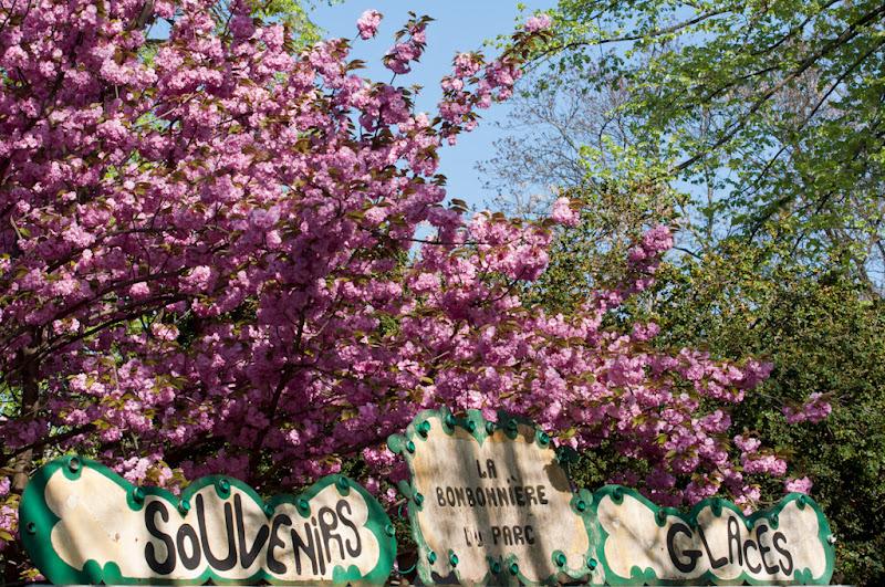 La Bonbonnière du Parc... 20110408_07_panneau_LaBonbonniereDuParc_DSC2449