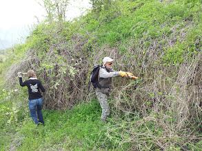 Photo: Inizio lavori, mura poligonali ad Alba Fucens nascoste dalla vegetazione