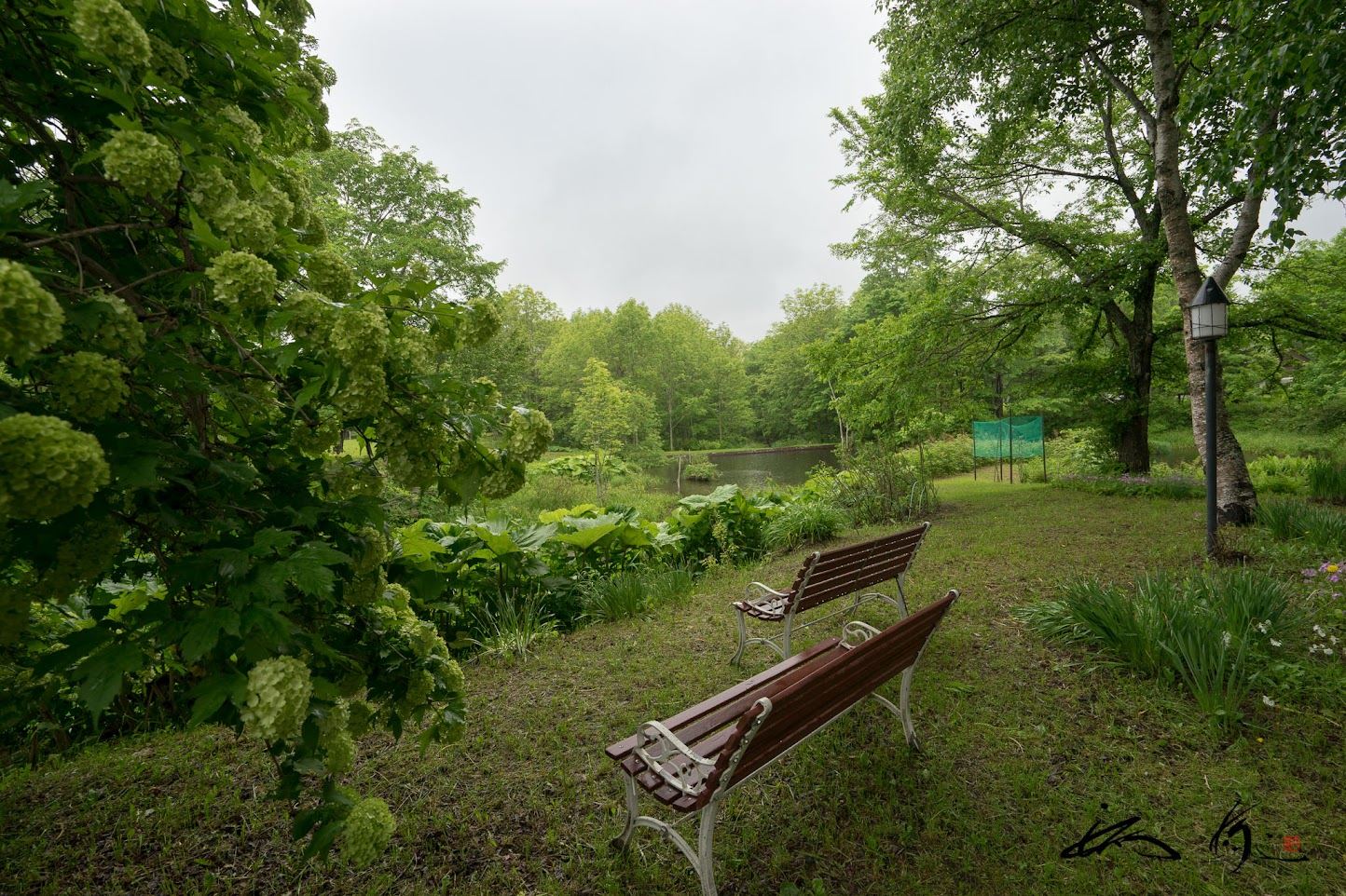 池のあるお庭
