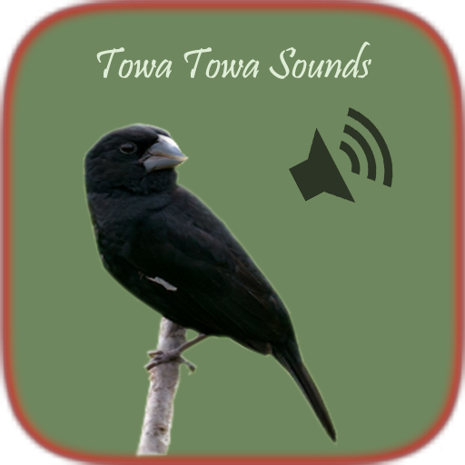 Towa Towa Sounds - Apps on Google Play