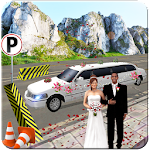 Limo Bridal Parking Simulator in Driving Transport Icon