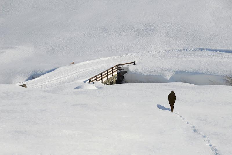 Non oltrepassare il ponte che conduce alla solitudine di giacominet