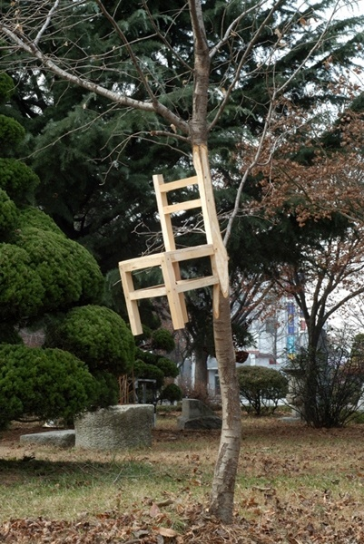 chair sculpture in living tree
