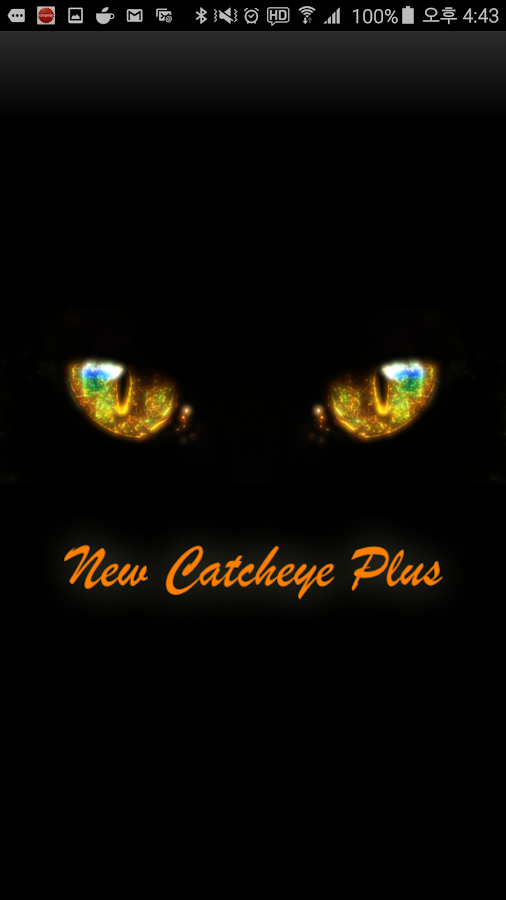 New Catcheye Plus- screenshot