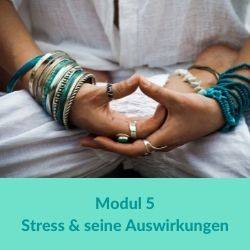 Hormonyogaausbildung - Modul 5