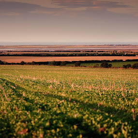 by Joe Lawrence - Landscapes Prairies, Meadows & Fields