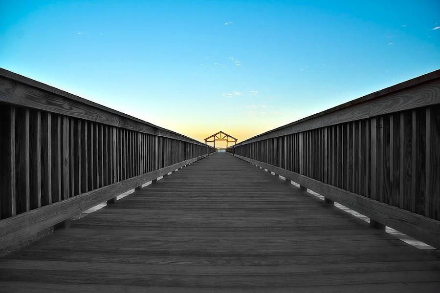 by Manny Cadiz - Buildings & Architecture Bridges & Suspended Structures