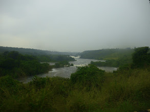 Photo: the mighty White Nile!