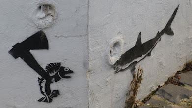 """Photo: Stencil; Unknown Artist; """"Sharkhunter"""""""