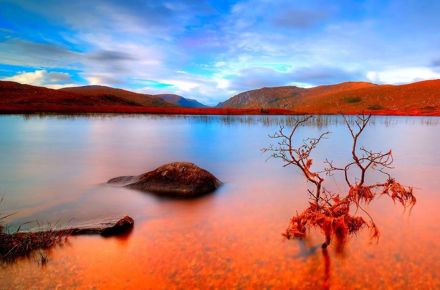 by Oliver Almazan - Landscapes Travel