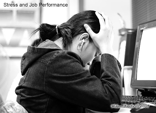 relationship between stress and job performance