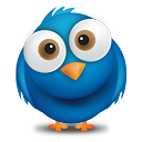 Siga Cris no Twitter