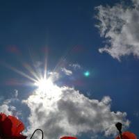 Il sole all'improvviso di