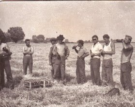 Photo: Aratás 1960-as évek Esik eső a harasztra. Haragszom én a parasztra, mert a paraszt akkor arat, mikor legjobban süt a nap. (Fél Lajos - id. F. Dénes nagyapja)