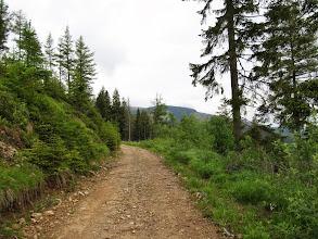 Photo: 10.Dalej szlak jest poprowadzony gruntową drogą.