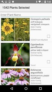 Kansas Wildflowers- screenshot thumbnail