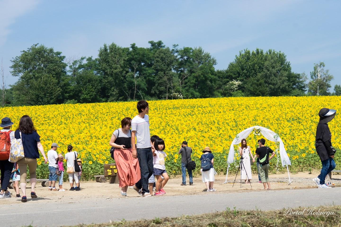7月29日に行われた結婚式のアーチは記念撮影用に渡邊さんより寄贈されました