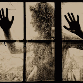 Through the Window by Melanie Metz - Nudes & Boudoir Artistic Nude ( nude, window, hands, woman, breasts, environmental )
