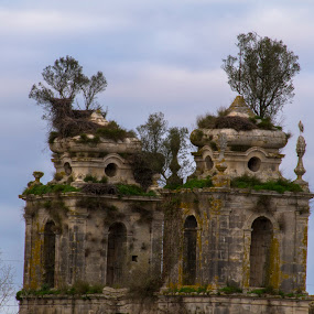 Mosteiro de Seiça by Edu Marques - Buildings & Architecture Decaying & Abandoned ( old, tower, towers, old city, ruins, tourism )