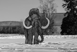 Photo: www.wanderinginfairbanks.com
