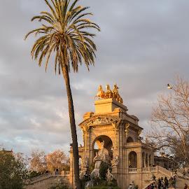 Parc Ciutadella Barcelona by Andrej Kozelj - City,  Street & Park  Fountains ( palm, bird, water, palm tree, famous, famous place, park, waterscape, beautiful, birds, barcelona, spain, city )