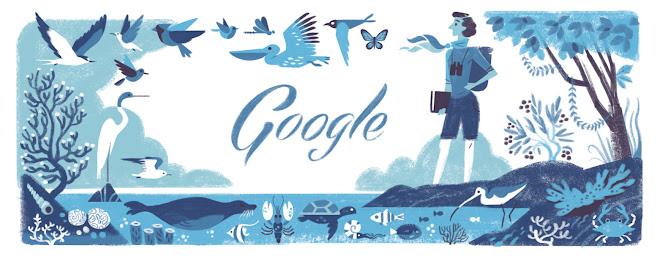 Rachel Carson Doodle