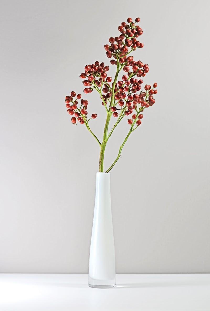 Bianco Floreale di Migliu