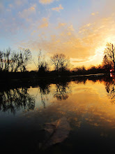 Photo: Leaf floating in the reflection of a bright sunset at Eastwood Park in Dayton, Ohio.