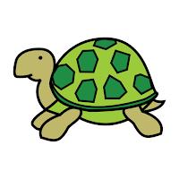 Kilpikonna Piirretty