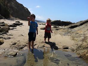 Photo: Clark & Finn Tide Pool Fun