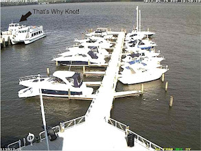 Photo: Captured from the Alexandria City Marina Cam. See! We are here!