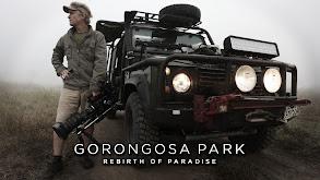 Gorongosa Park -- Rebirth of Paradise thumbnail