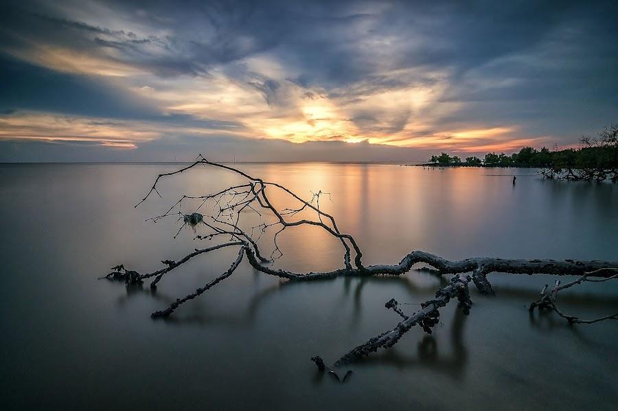 last light by Fadzly Sham - Landscapes Sunsets & Sunrises (  )